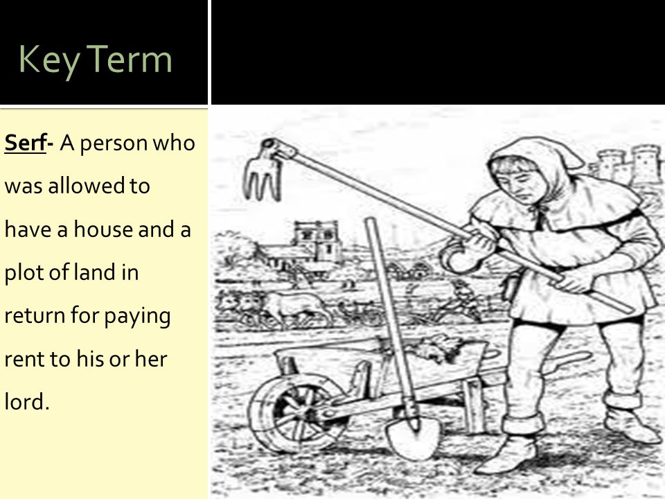 Key Term Serf- A person who was allowed to have a house and a plot of land in return for paying rent to his or her lord.