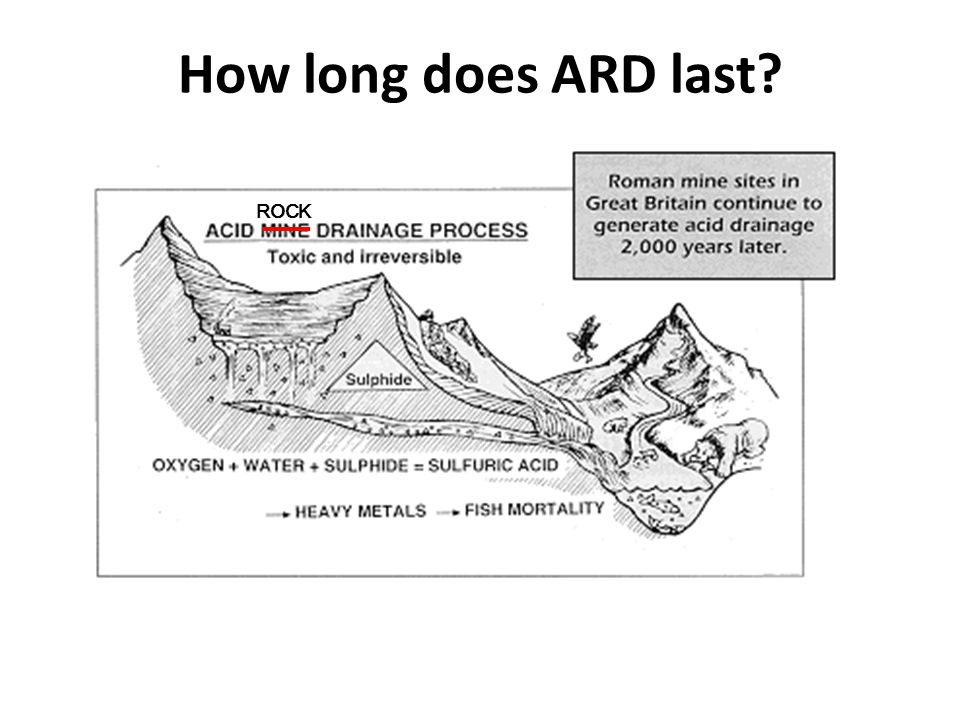 How long does ARD last ROCK