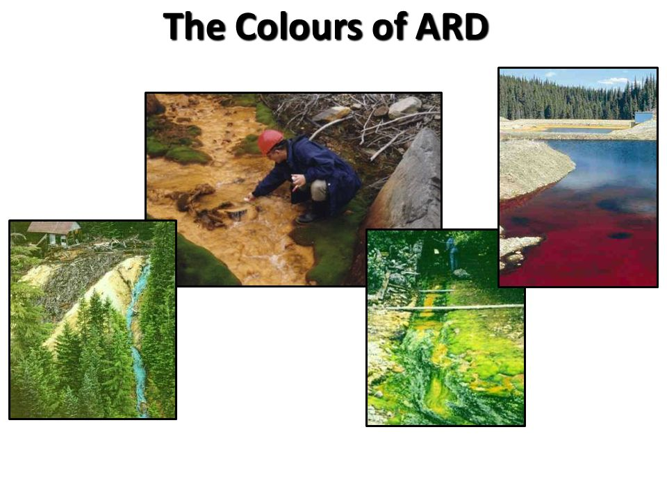 The Colours of ARD