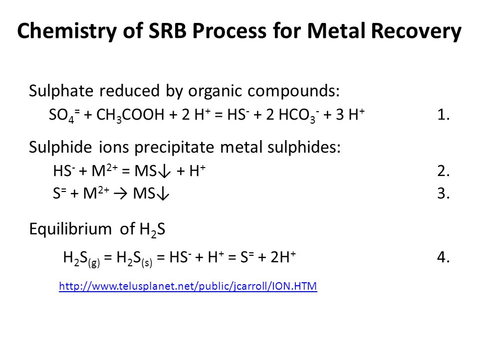 Chemistry of SRB Process for Metal Recovery