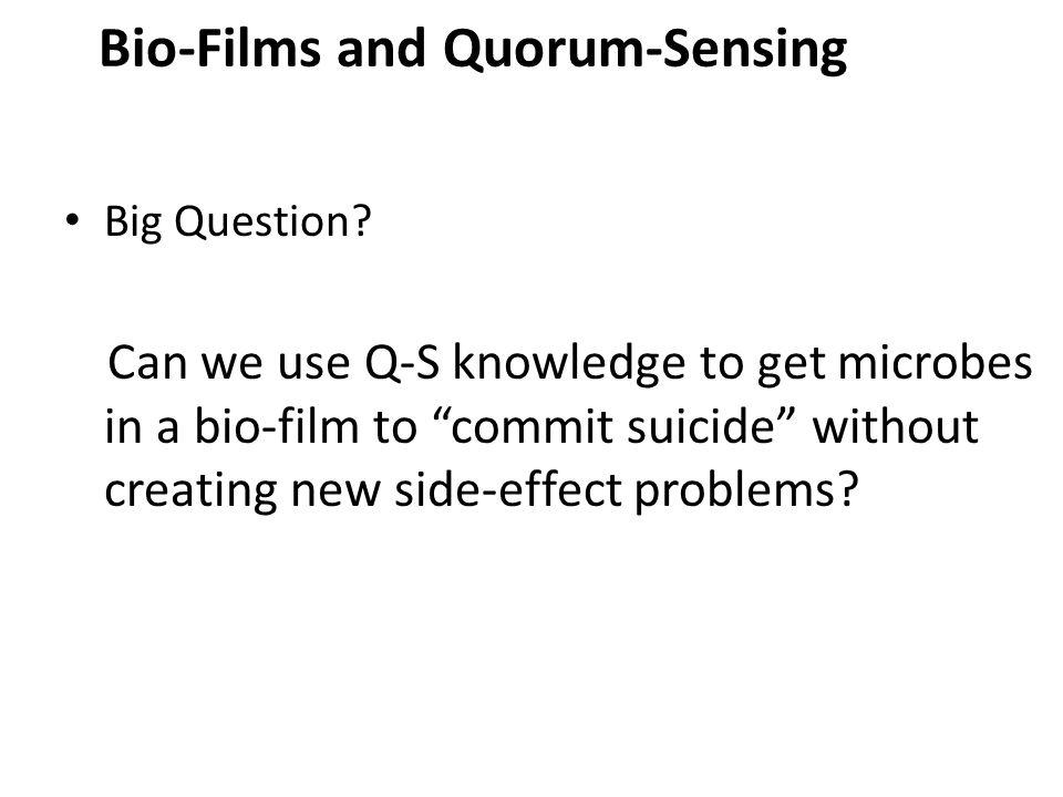 Bio-Films and Quorum-Sensing