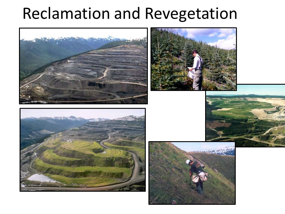 Reclamation and Revegetation