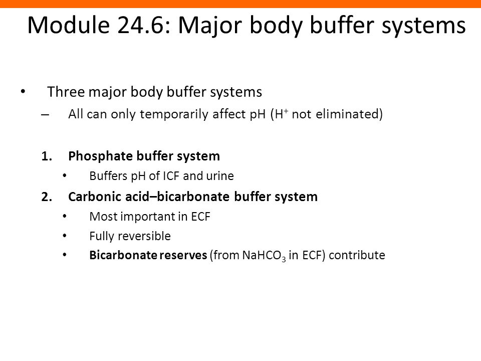Module 24.6: Major body buffer systems