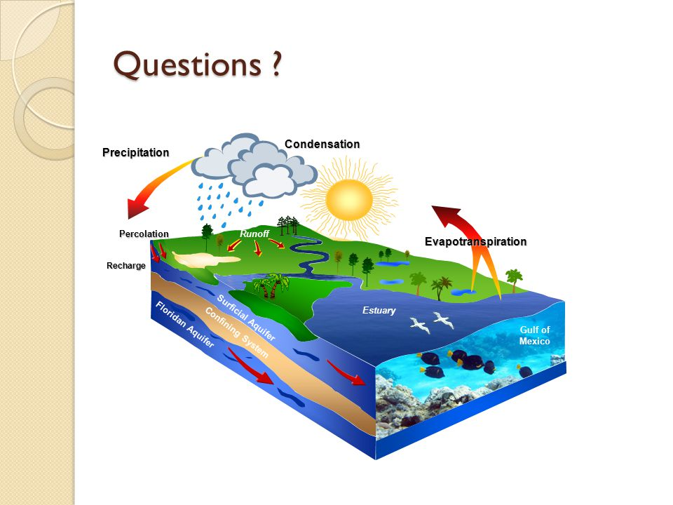 Questions Condensation Precipitation Evapotranspiration Runoff