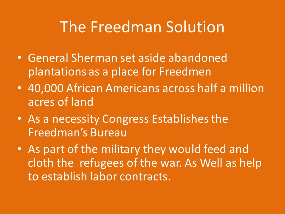 The Freedman Solution General Sherman set aside abandoned plantations as a place for Freedmen.