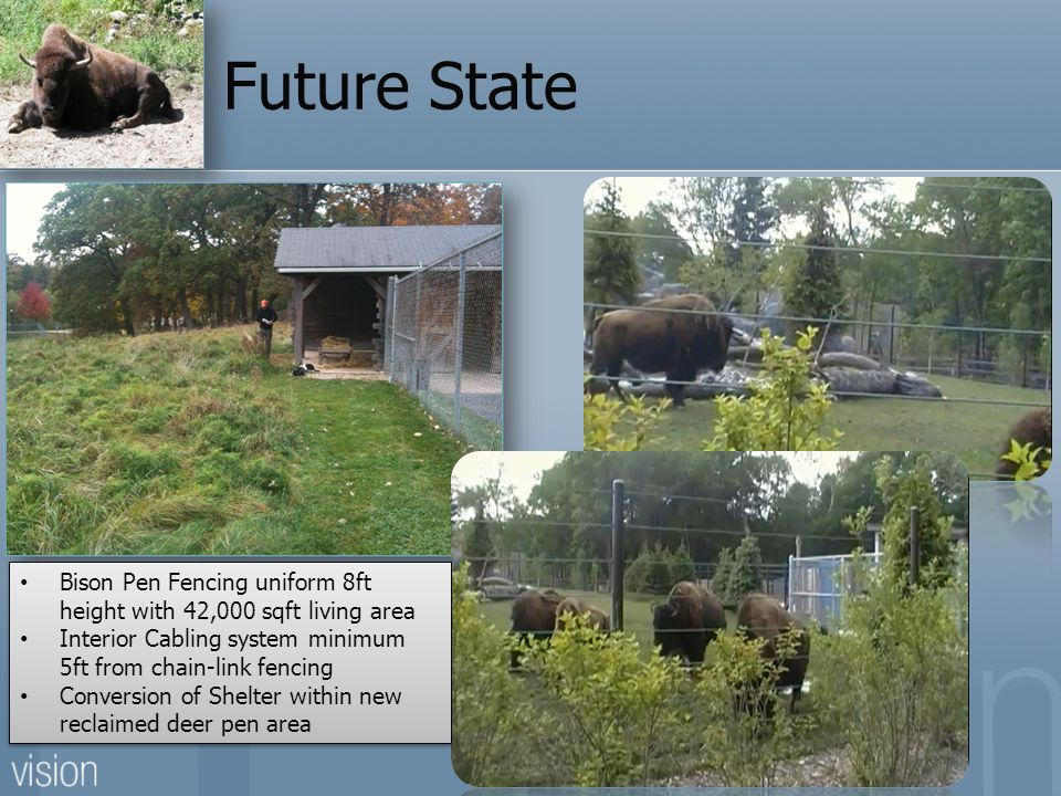 Future State Bison Pen Fencing uniform 8ft height with 42,000 sqft living area. Interior Cabling system minimum 5ft from chain-link fencing.