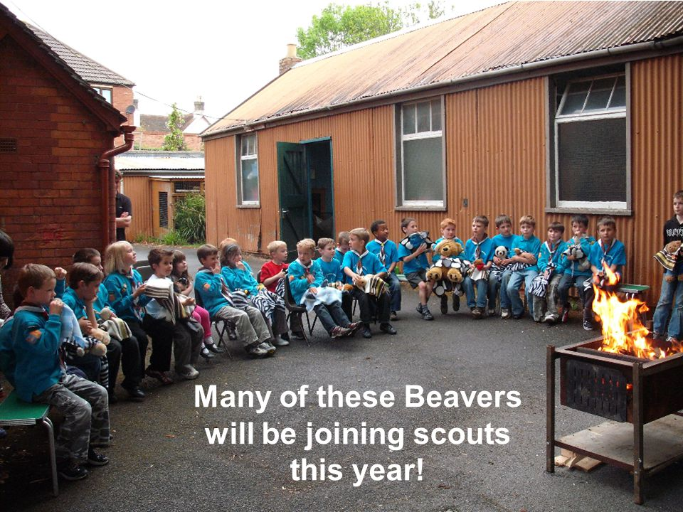 Many of these Beavers will be joining scouts this year!