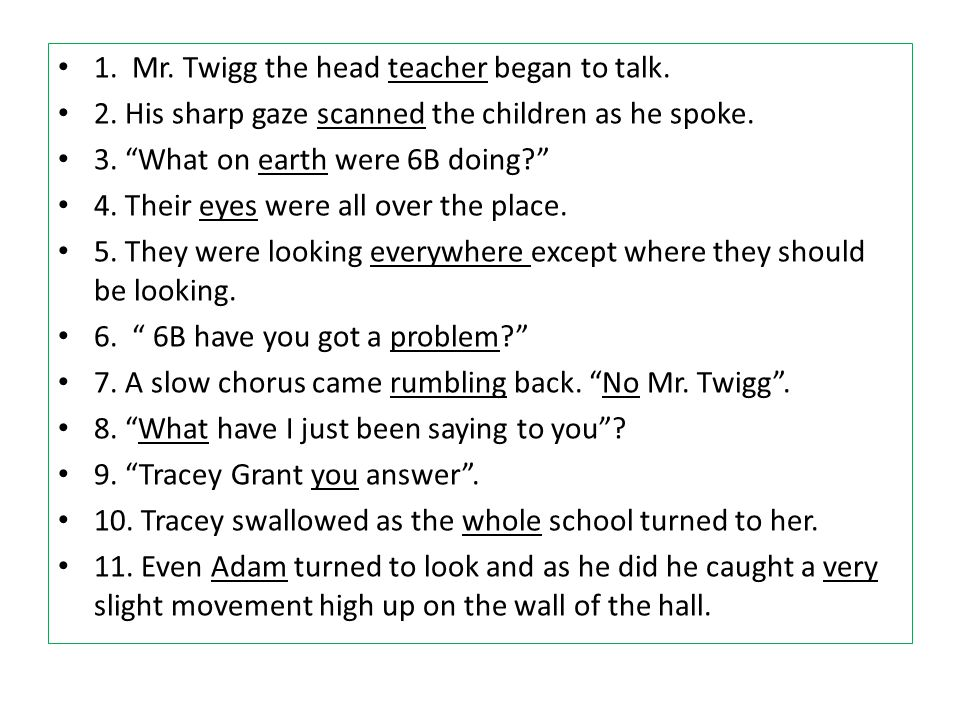 1. Mr. Twigg the head teacher began to talk.