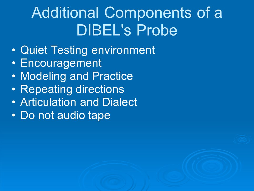 Additional Components of a DIBEL s Probe