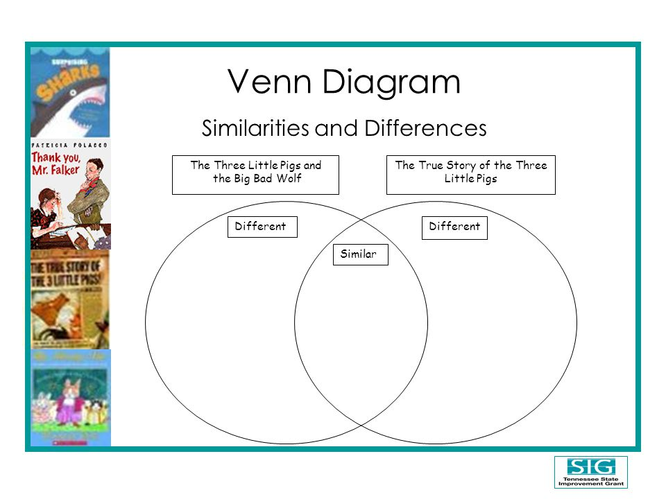 Venn Diagram Similarities and Differences The Three Little Pigs and