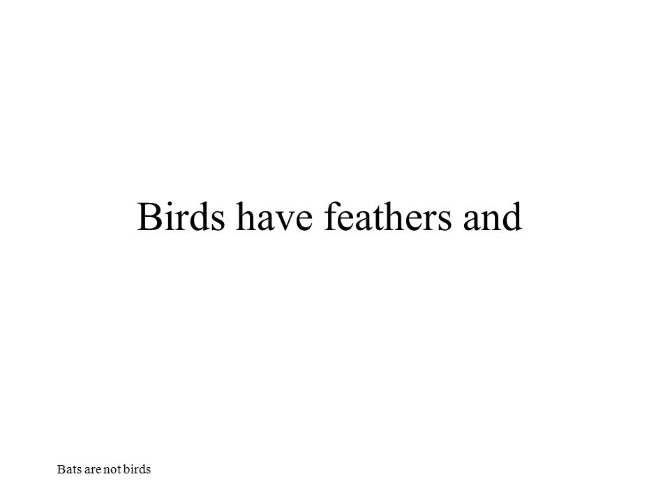 Birds have feathers and