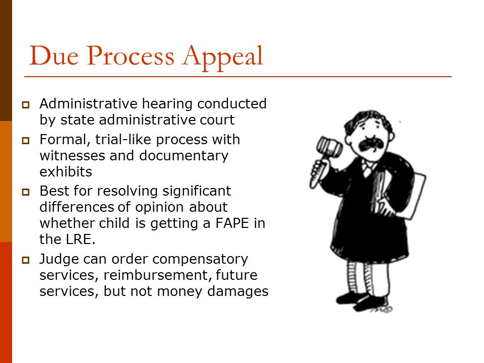 Due Process Appeal Administrative hearing conducted by state administrative court.