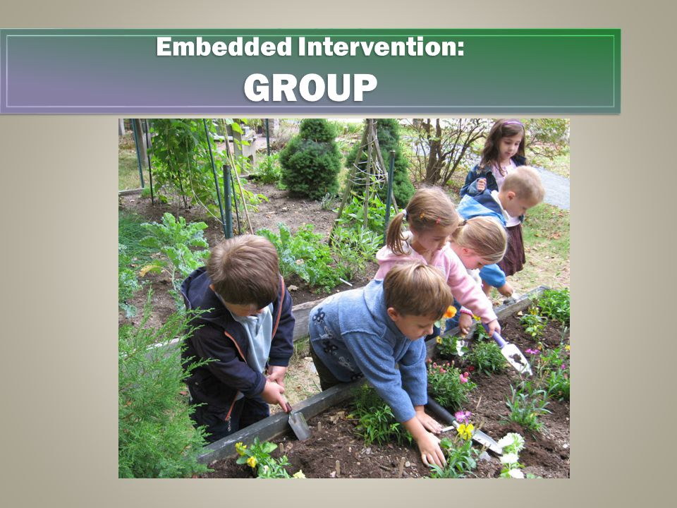 Embedded Intervention EXAMPLES: Group Embedded Intervention: GROUP