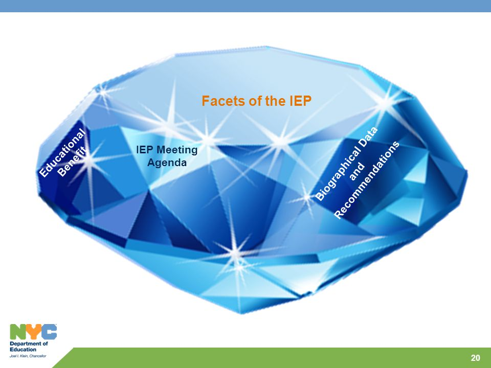 Facets of the IEP Educational Biographical Data Benefit IEP Meeting