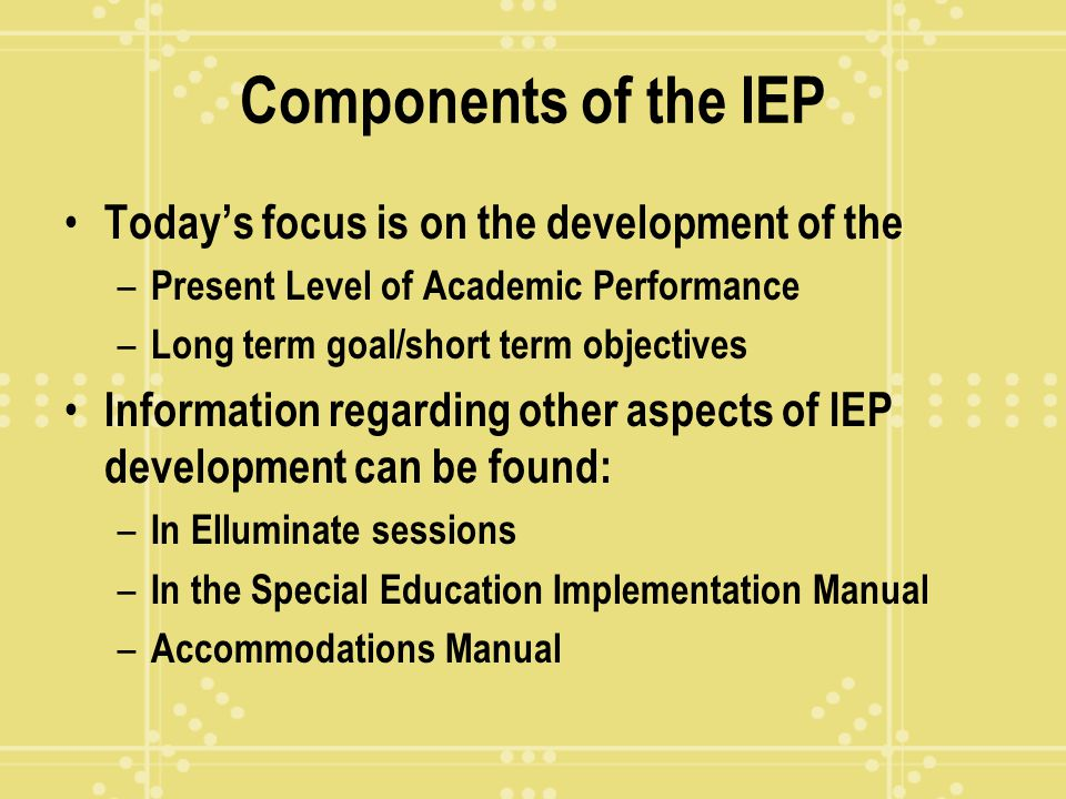 Components of the IEP Today's focus is on the development of the
