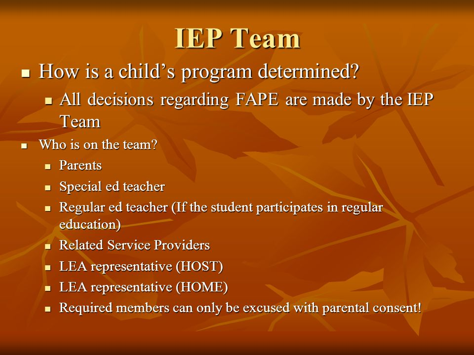 IEP Team How is a child's program determined
