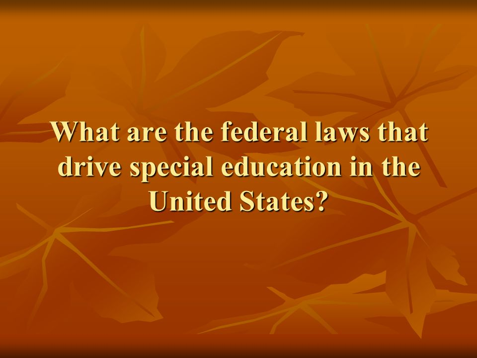 What are the federal laws that drive special education in the United States