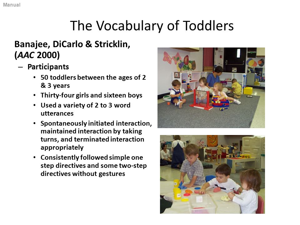 The Vocabulary of Toddlers