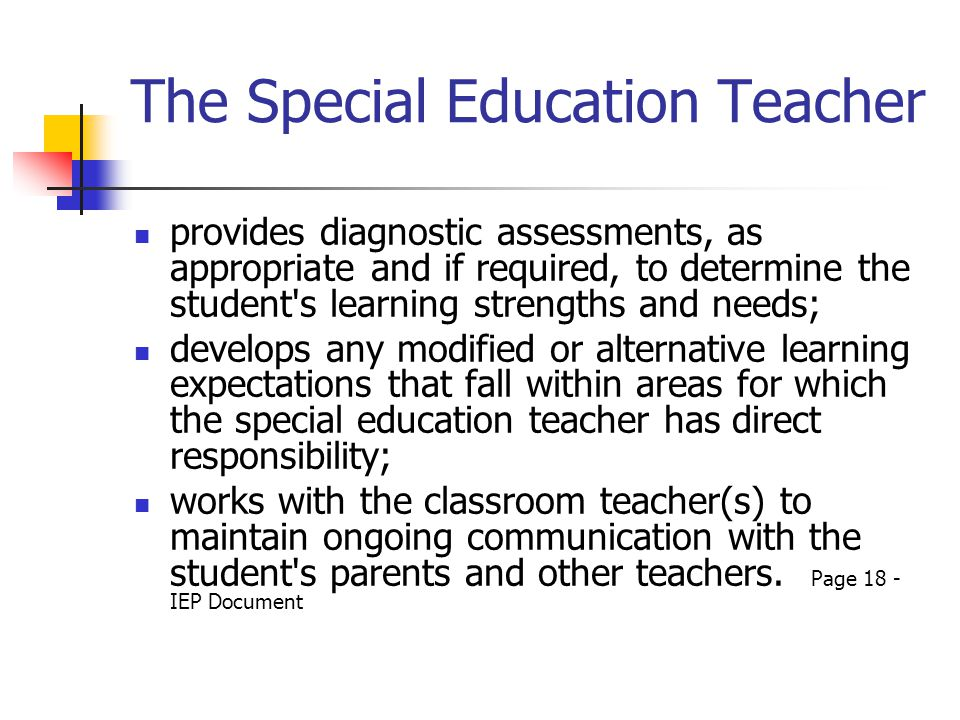 The Special Education Teacher