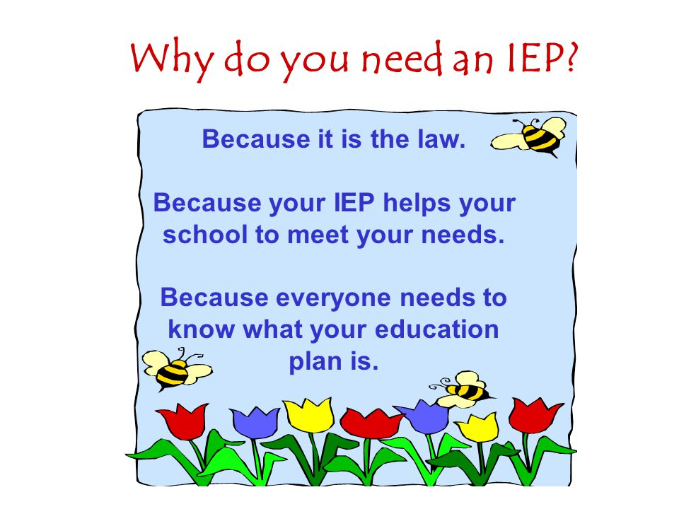 Why do you need an IEP Because it is the law.