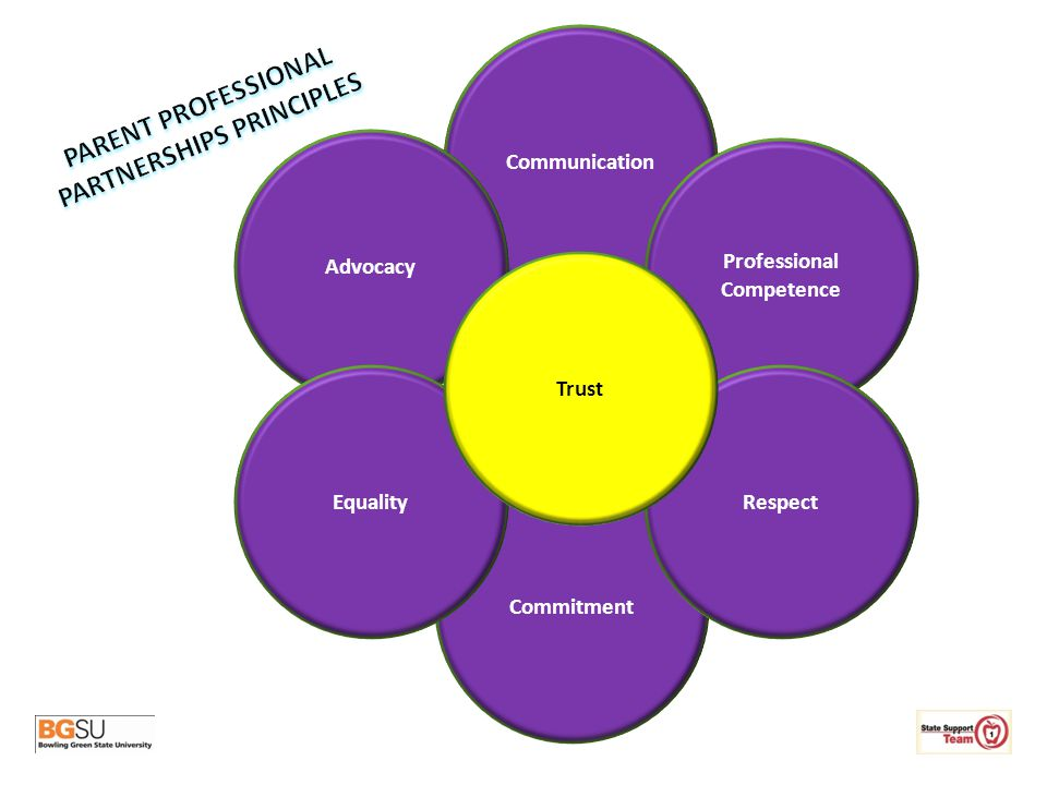 PARENT PROFESSIONAL PARTNERSHIPS PRINCIPLES Professional Competence