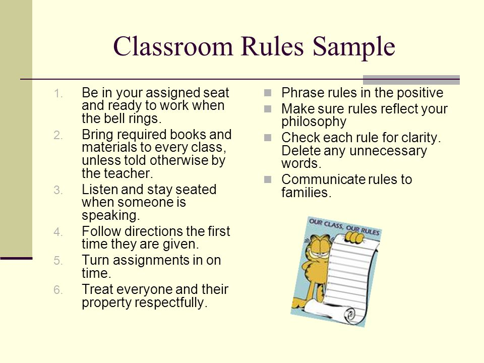 Classroom Rules Sample