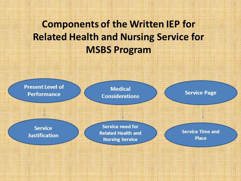 Components of the Written IEP for Related Health and Nursing Service for MSBS Program