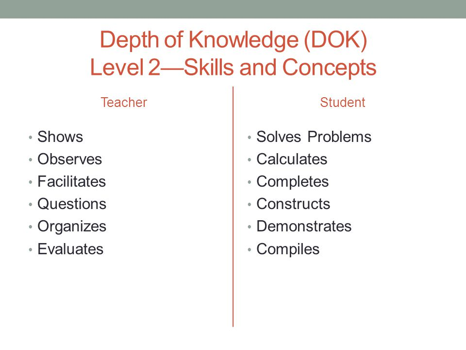 Depth of Knowledge (DOK) Level 2—Skills and Concepts
