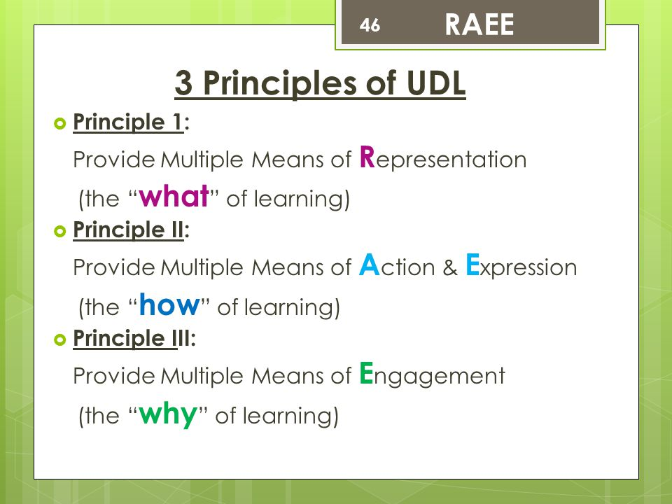 3 Principles of UDL RAEE Principle 1: