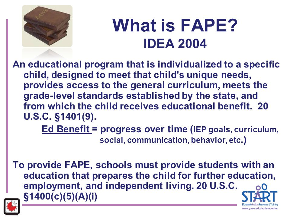 What is FAPE IDEA 2004
