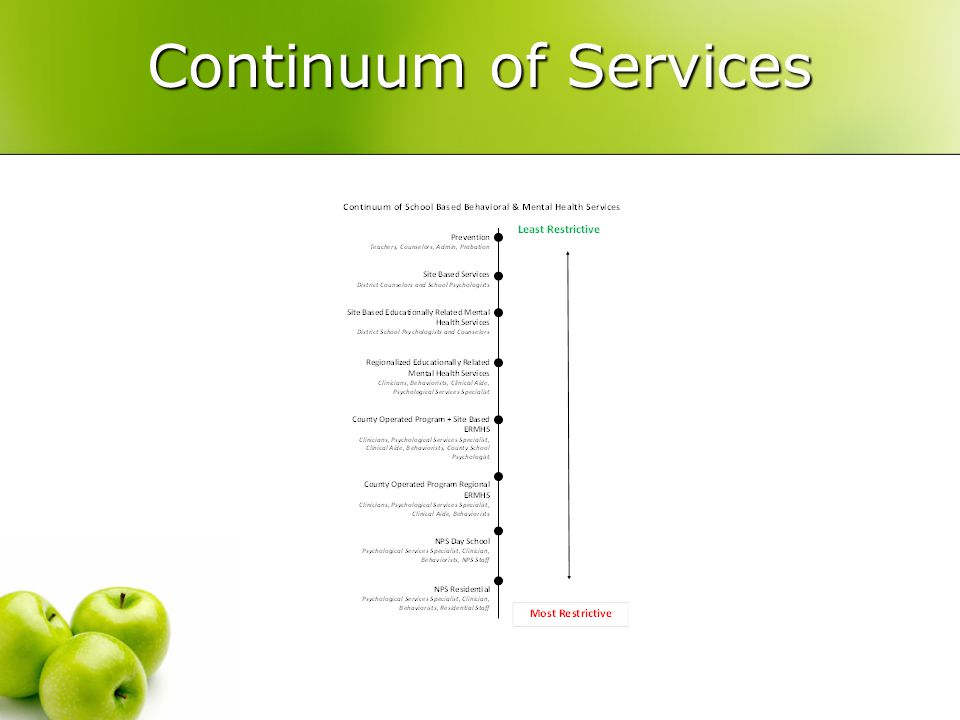 Continuum of Services Veronica (make handout)