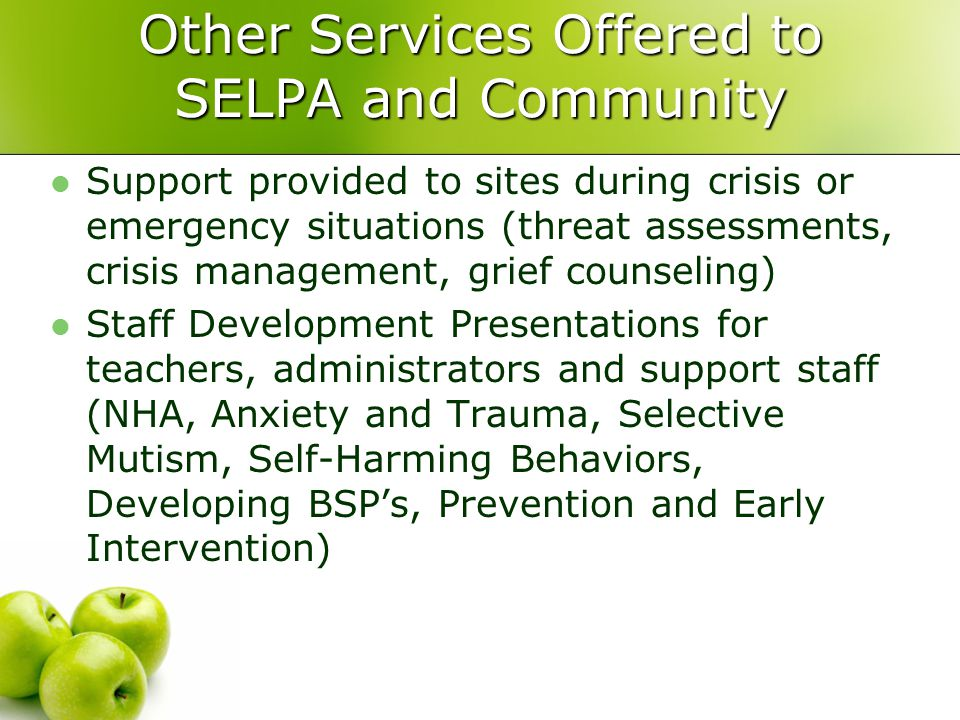 Other Services Offered to SELPA and Community
