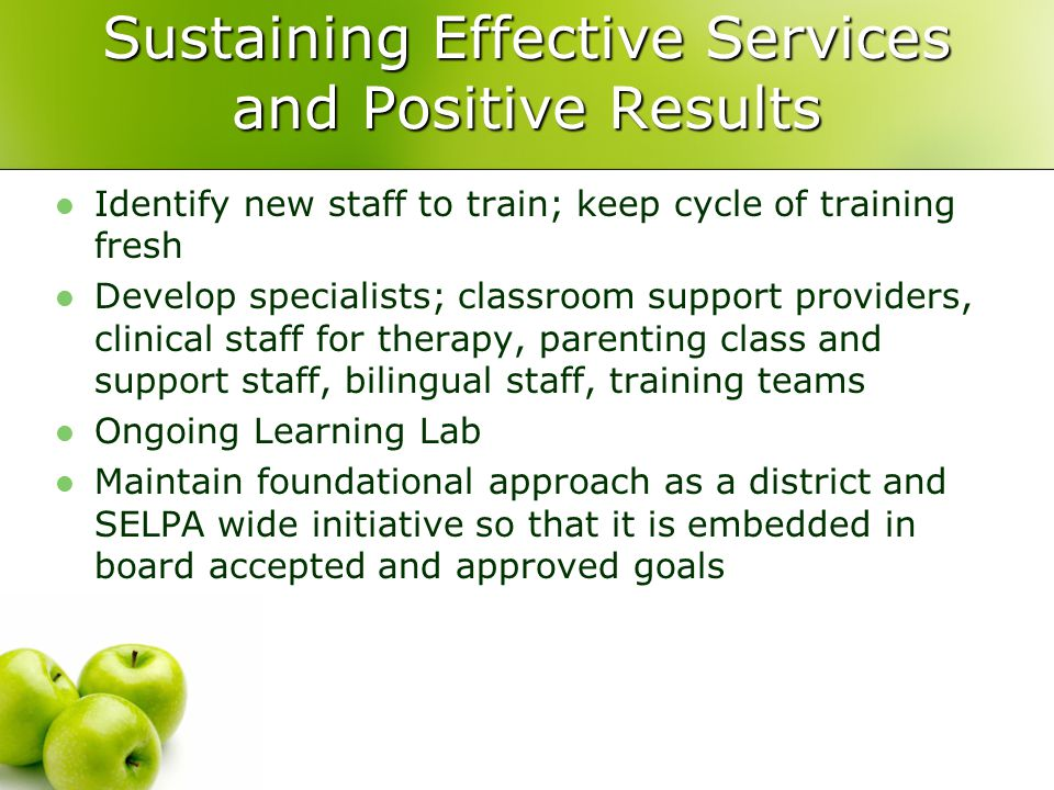 Sustaining Effective Services and Positive Results