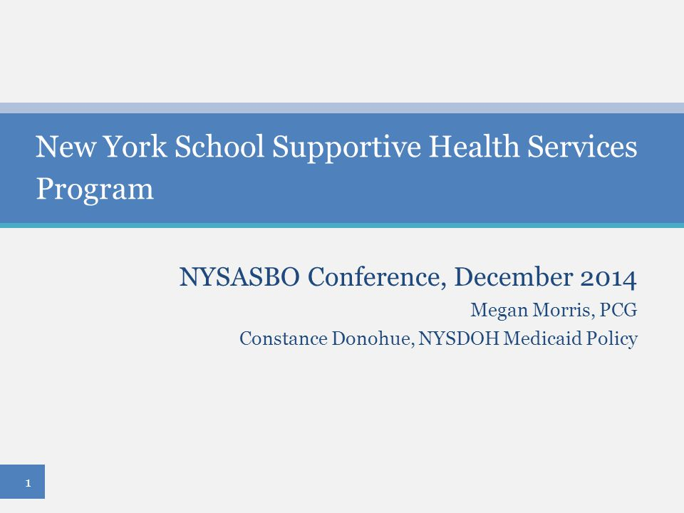 New York School Supportive Health Services Program