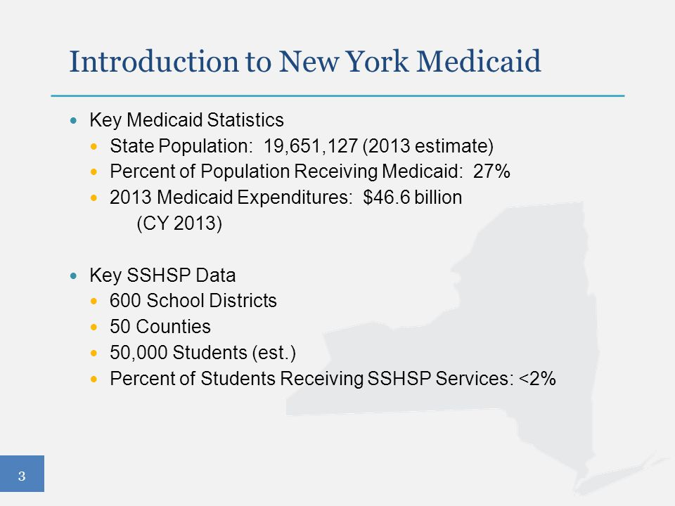 Introduction to New York Medicaid