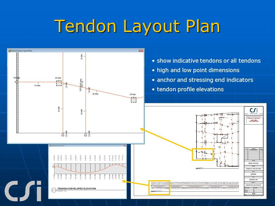 Tendon Layout Plan show indicative tendons or all tendons