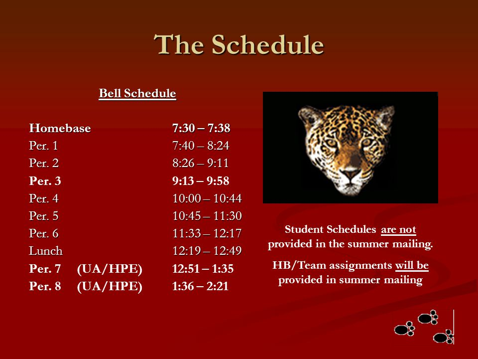 The Schedule Bell Schedule Homebase 7:30 – 7:38 Per. 1 7:40 – 8:24