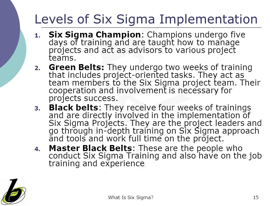 Levels of Six Sigma Implementation