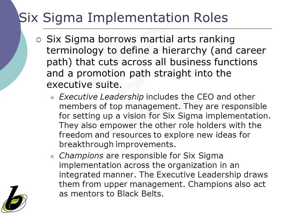 Six Sigma Implementation Roles