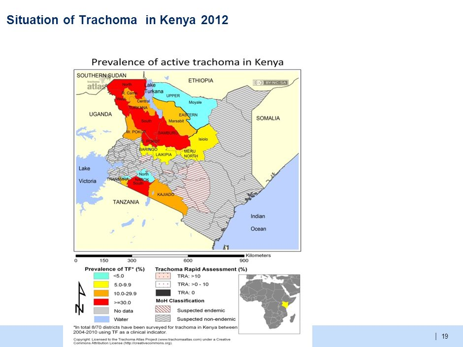 The Kenya Trachoma action Plan (Template) achieved the objectives of :