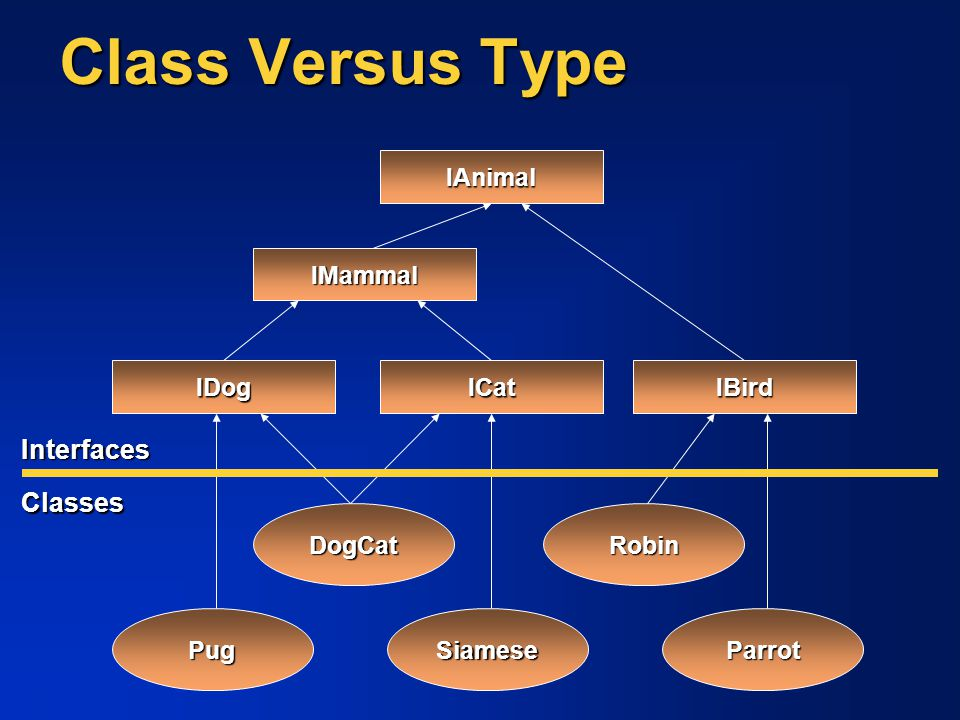 Class Versus Type Interfaces Classes IAnimal IMammal IBird IDog ICat