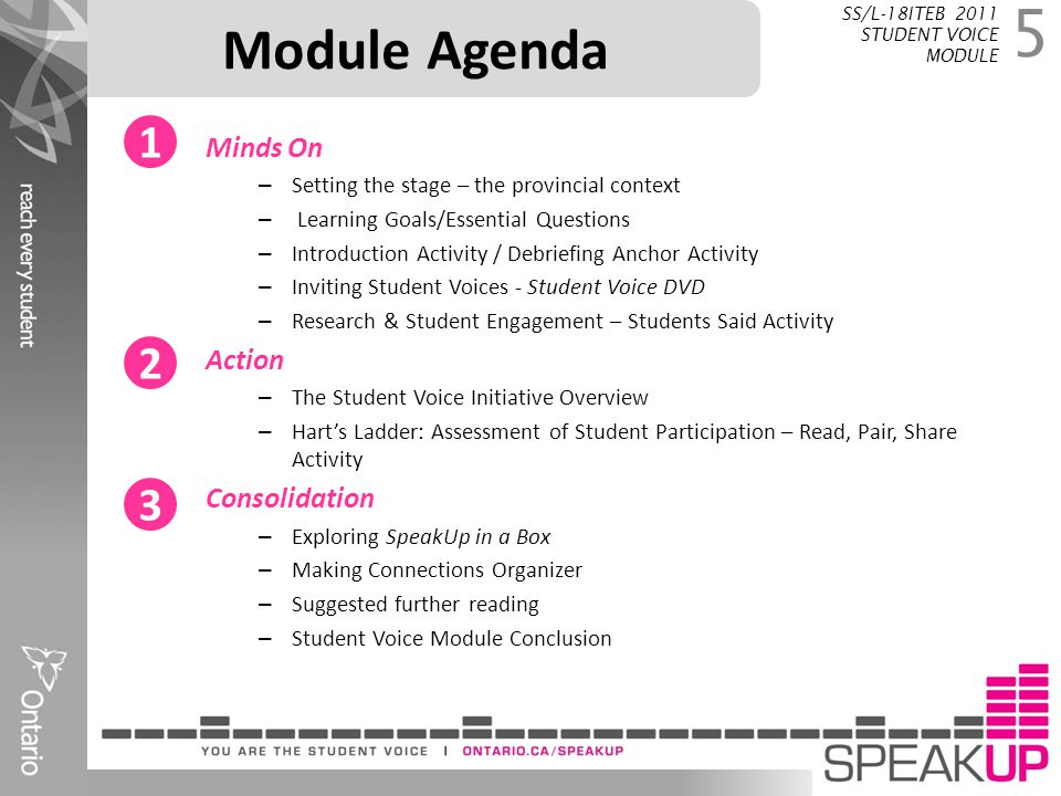 Module Agenda 1 2 3 Minds On Action Consolidation