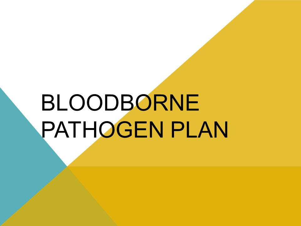 BLOODBORNE PATHOGEN PLAN
