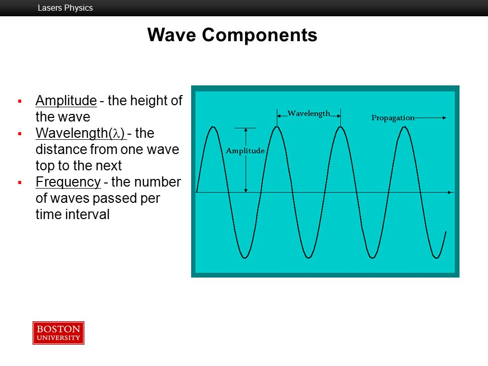 Wave Components Amplitude - the height of the wave