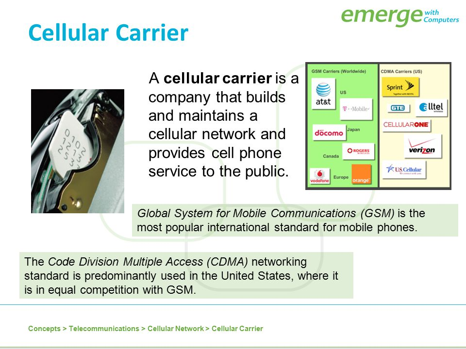 Cellular Carrier A cellular carrier is a company that builds and maintains a cellular network and provides cell phone service to the public.