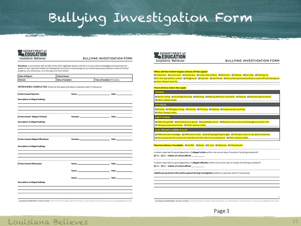 Bullying Investigation Form