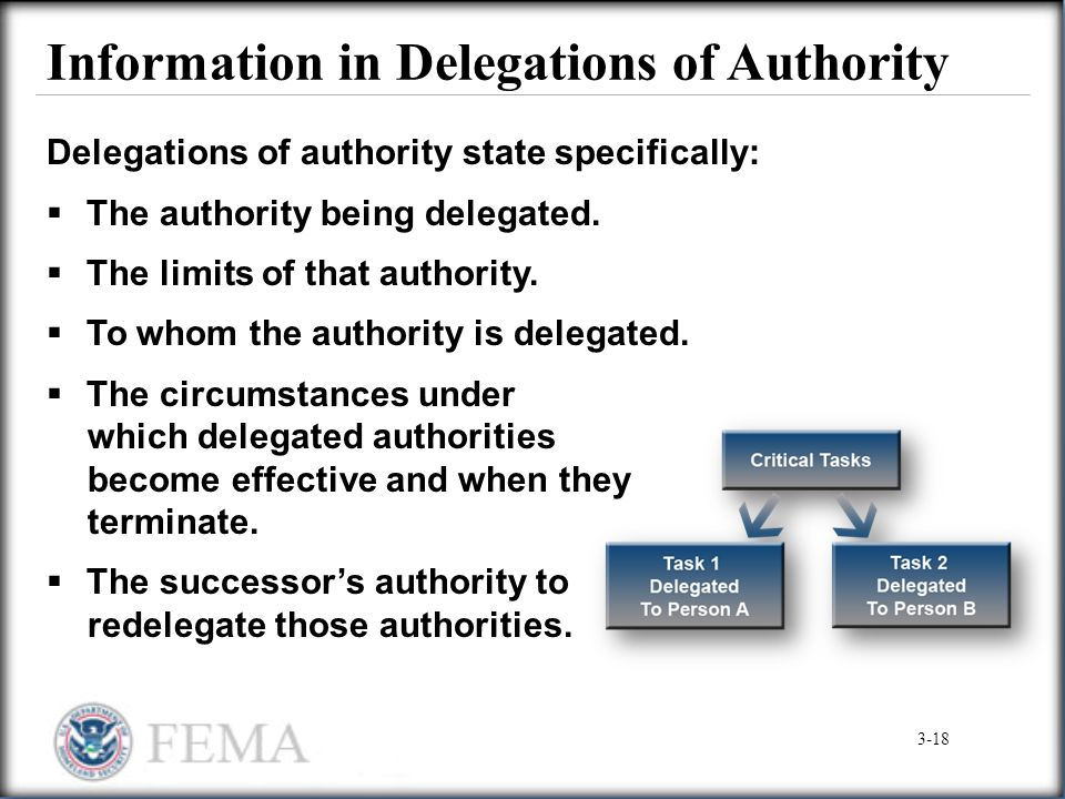 Information in Delegations of Authority
