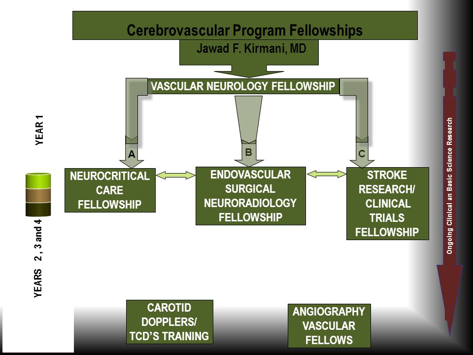 Cerebrovascular Program Fellowships