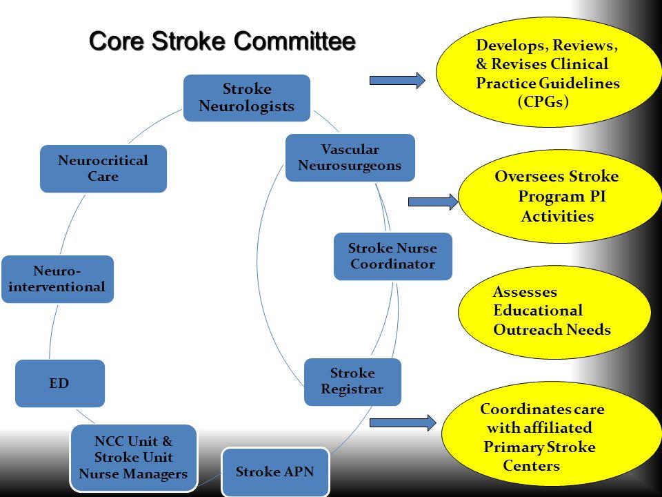 Core Stroke Committee Oversees Stroke Program PI Activities