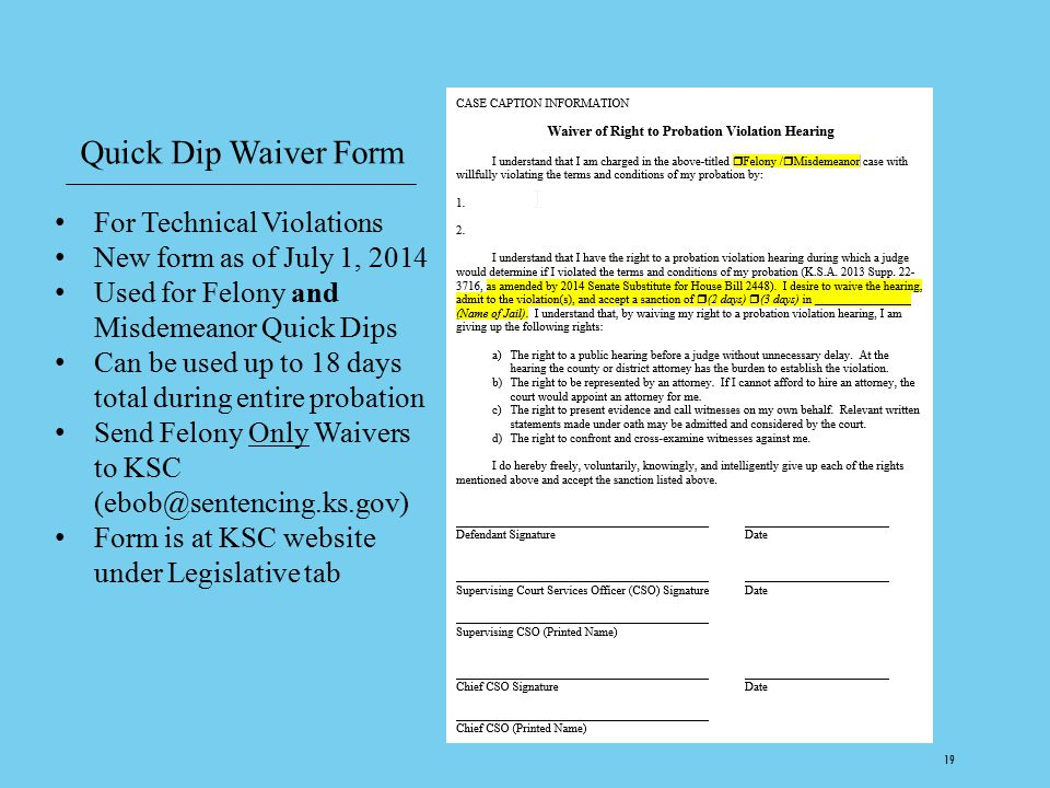 Quick Dip Waiver Form For Technical Violations